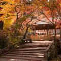 Photos: 2014年・鍬山神社の紅葉