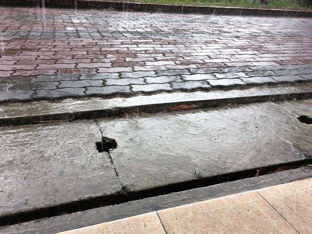 雨のミャンマー イーストダゴン (6)