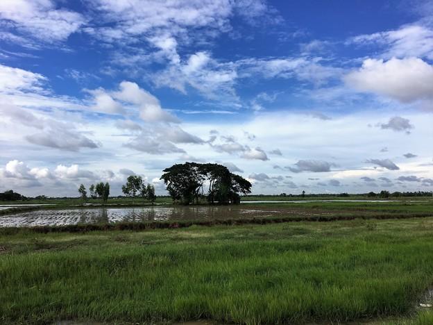 ヤンゴン川の川向う (7)