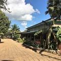 Photos: SANE LET TINリゾート (11)