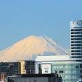 大さん橋からの富士山