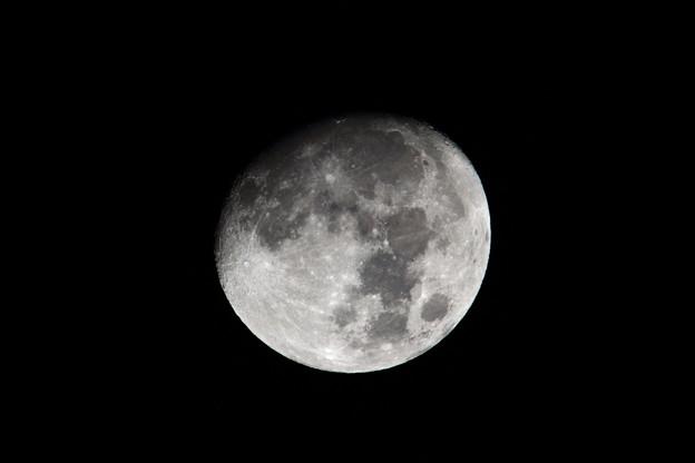 Photos: 1月2日 十三夜