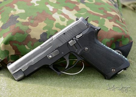 P2202L