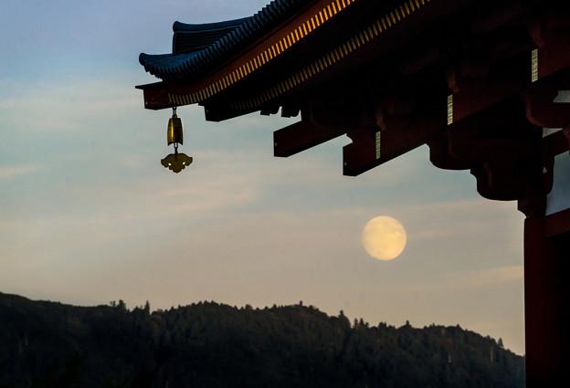 写真: Suzaku-moon-09664