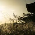 写真: 朱雀門-09582-2