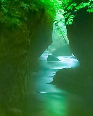 写真: 神秘の川