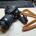 Photos: P1010261