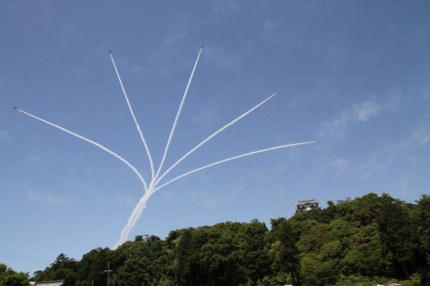 Photos: 彦根眺城フェス ブルーインパルス展示飛行9
