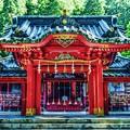 写真: パワースポット ~箱根神社 御本殿~