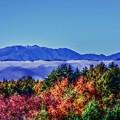 写真: 山と雲海と紅葉