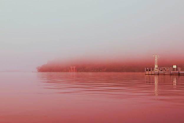 朝ぼらけ 箱根の湖霧 たえだえに あらはれわたる 神の領域・・・(*´з`)