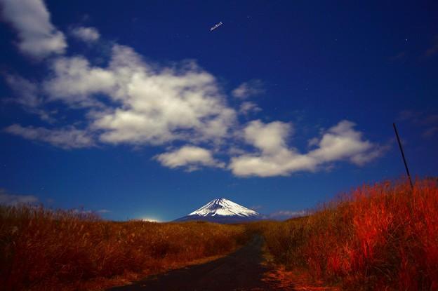 写真: 月夜の晩に・・・富士を望む