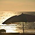 写真: 0005 ビーチパラソル