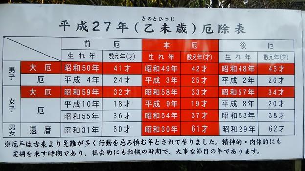 【1月5日に初詣】東京足立区からママチャリで鷲宮神社へ(その5)