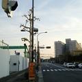 Photos: スカイツリーや江東区の夜景ほか12月28日に都心方面へ出かけた画像その10