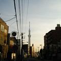スカイツリーや江東区の夜景ほか12月28日に都心方面へ出かけた画像その14