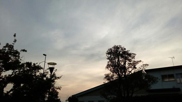 写真: 茨城県五霞町・道の駅ごかの空