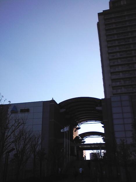 千住新橋の近くにて。