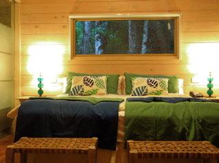 【 Hotel La Cantera 】窓からジャングルの木々が見える部屋