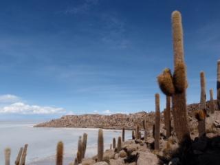 写真: 塩湖に浮かぶ島