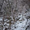 Photos: オウネンの滝上流の雪景色