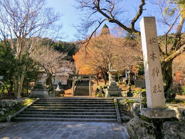 熊川宿の松木神社