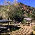 写真: 若狭瓜割滝名水公園