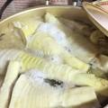 写真: 採った筍をすぐ茹でる