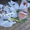 Photos: 今日の買い物