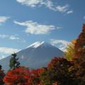 紅葉と富士1