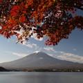紅葉と富士2