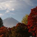 写真: 紅葉と富士2