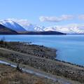 写真: ニュージーランド*テカポ湖1