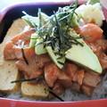 写真: テカポ湖名物・サーモン丼1
