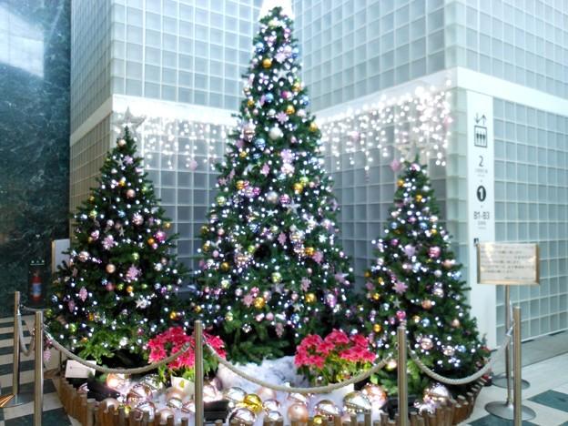 2017*築地・聖路加タワーのクリスマスツリー
