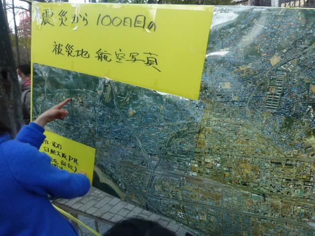 被災地100日目 空からの写真@東遊園地