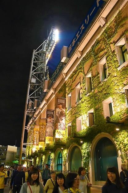写真: 試合後の甲子園 ライトアップ