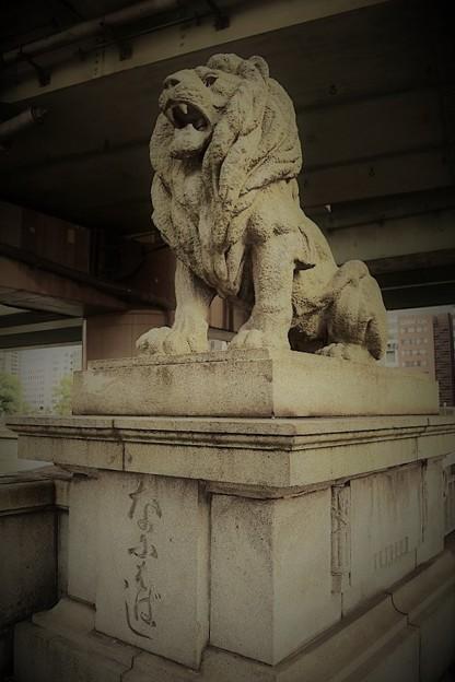 写真: なにわ橋(ライオン橋)