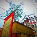 写真: 八幡山