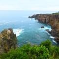 太平洋を望む絶景の断崖