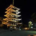 Photos: なら燈花会 興福寺会場