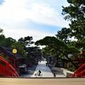 写真: 反橋からの眺め