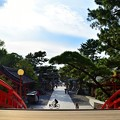 Photos: 反橋からの眺め