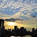 写真: 天満橋の夕焼け