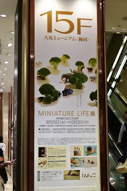MINIATURE LIFE展