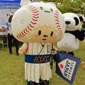 写真: 侍ジャパン公式マスコット 応援侍たまベヱ