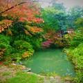 廣田神社(広田神社)神池