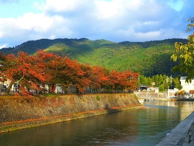京都 東山と紅葉