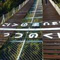 Photos: 観光リフト 両国橋
