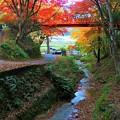 紅葉の名所と呼ばれる養父神社